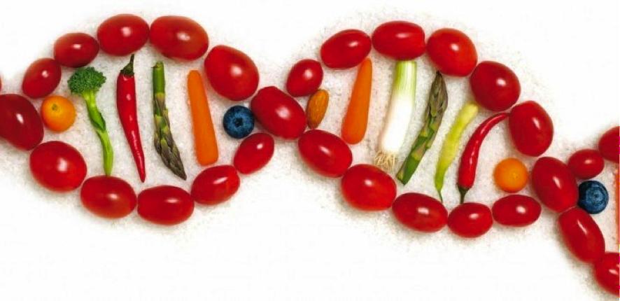 gen-y-verduras